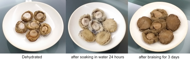 Hydrating Abalone